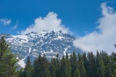 jutrzenkowej lekkiej halnego szczytu fotografii purpurowy śnieżny brać Zdjęcia Royalty Free