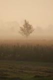 jutrzenkowy krajobrazowy prosty Veneto Obrazy Royalty Free