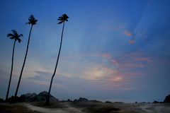 Jutrzenkowy widok piaska plaża z skałami Obraz Royalty Free