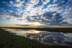 Jutrzenkowy widok przyrody i ptaka rezerwa przy żyta schronieniem, Wschodni Sussex, Anglia Fotografia Stock