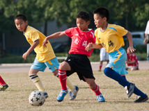 Juvenile football Stock Images