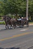 Juventude do Condado de Lancaster Amish no vagão fotos de stock royalty free