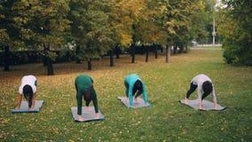 A juventude moderna está fazendo a ioga no parque da cidade que aprende de instrutor experiente que aprecia o ar fresco e o estil filme