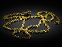 Juwel-Halskette - Edelstahl lizenzfreie stockfotografie