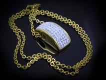 Juwel - Luxushalskette für Frauen lizenzfreies stockbild
