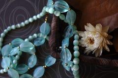 Juwelen met de herfstsamenstelling stock foto's