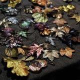 Juwelenbladeren Royalty-vrije Stock Afbeeldingen