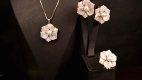 Juwelenopslag, juwelenreeks, juwelen van Glas de Roze bloemen met goud voor de meisjes, oorringen, ringen, tegenhangers, kettinge stock footage