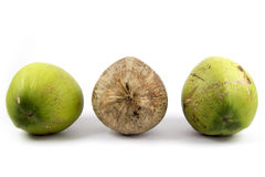 Juxtapose - Three of Coconut with Differences brown in Middle. Juxtapose - Three of Coconut fruits with Differences brown in Middle Royalty Free Stock Photography