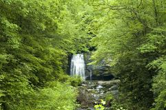 JW_037_003_05. Meigs Falls, Great Smoky Mtns Nat. Park, TN stock photos