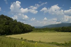 JW_038_025_05. Early Summer Landscape, East Tennessee royalty free stock photography