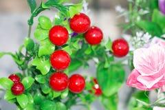 Künstliche rote Beeren lokalisiert auf weißem Hintergrund lizenzfreies stockfoto