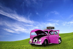 Käfer-Auto Stockfotografie