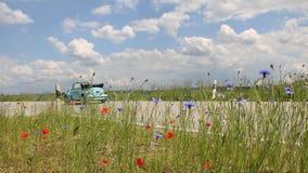 Käfer Oldtimer auf dem Weg, Landstraße mit Blumen Stockbilder