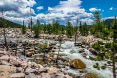 Källa av Coloradofloden Bergflod i Rocky Mountains Royaltyfria Foton