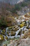 Källa av den Socha floden i Slovenien royaltyfri foto