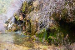 Källa av floden Cuervo Cuenca Royaltyfri Foto