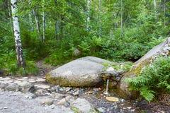 Källan av naturligt vatten, wellspringen som flödar vaggar igenom, i skog Royaltyfria Foton
