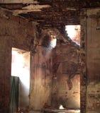 källare Arkivbilder