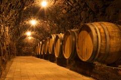 källarecognacen flankerar oaken där wine Royaltyfri Bild