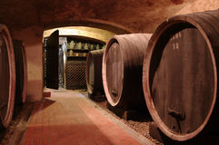 källarecognacen flankerar oaken där wine Arkivbild