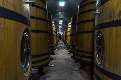 källarecognacen flankerar oaken där wine Royaltyfri Foto