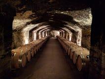 källarecognacen flankerar oaken där wine Royaltyfria Bilder