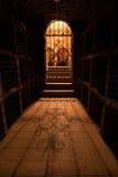 källaredörr som wine royaltyfria bilder