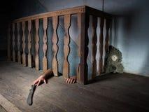 källareskräck Arkivbild