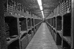 källarewine Arkivbilder