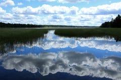 Källfloder av Mississippi Royaltyfri Foto