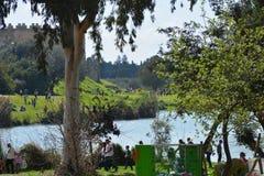 Källor av den Yarkon floden Royaltyfri Fotografi