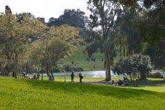 Källor av den Yarkon floden Arkivbild