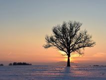 Kälte, aber bunter Winterabend in Litauen stockfotografie