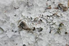 Kälte, Eis, das Firmament, Anfang April eingefroren, Wasser, Land niedergehalten durch Eis Lizenzfreie Stockfotos