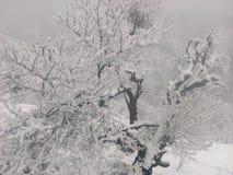 Kälte im Dorf lizenzfreie stockbilder