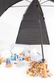 Kälte-und Grippe-Jahreszeit mit Umbrella_Portrait Stockfoto