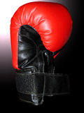 Kämpfender Handschuh lizenzfreies stockbild