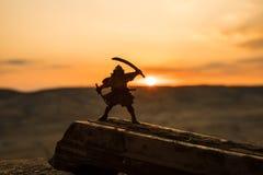Kämpfer mit einem Klingenschattenbild ein Himmel ninja Samurais auf Berg mit dunklem getontem nebeligem Hintergrund lizenzfreies stockfoto