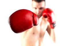 Kämpferhandschuh. Lokalisiert auf weißem Hintergrund. Lizenzfreies Stockfoto