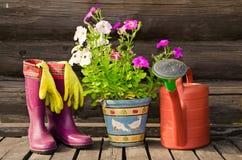 kängor kan blomma rubber bevattna för kruka Arkivfoto