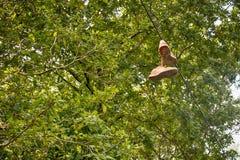 kängor på ett träd, Spanien Royaltyfri Foto