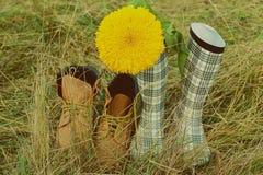 Kängor på fältgrässolrosen ett par Royaltyfri Bild