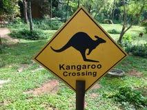 Känguru-Überfahrtzeichen Lizenzfreie Stockfotografie