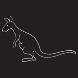 Känguru lokalisiert Stockfotos