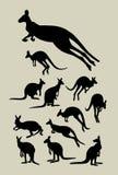 Känguru-Schattenbilder Lizenzfreie Stockfotos