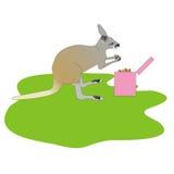 Känguru som äter smällare Arkivbild
