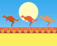 kängurur Arkivbild