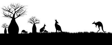 Kängurur som hoppar i vildmarken av Australien