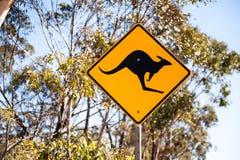 Kängurutecken Arkivfoto